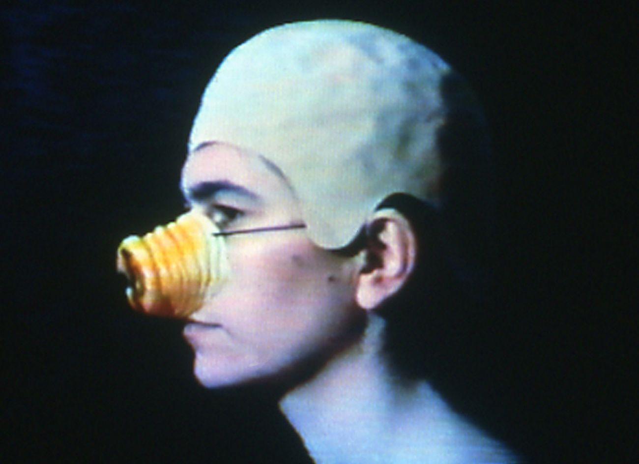 Liliana Moro, Aristocratica, 1994. Photo Serge Domingie (Firenze). Courtesy dell'artista & Castello di Rivoli