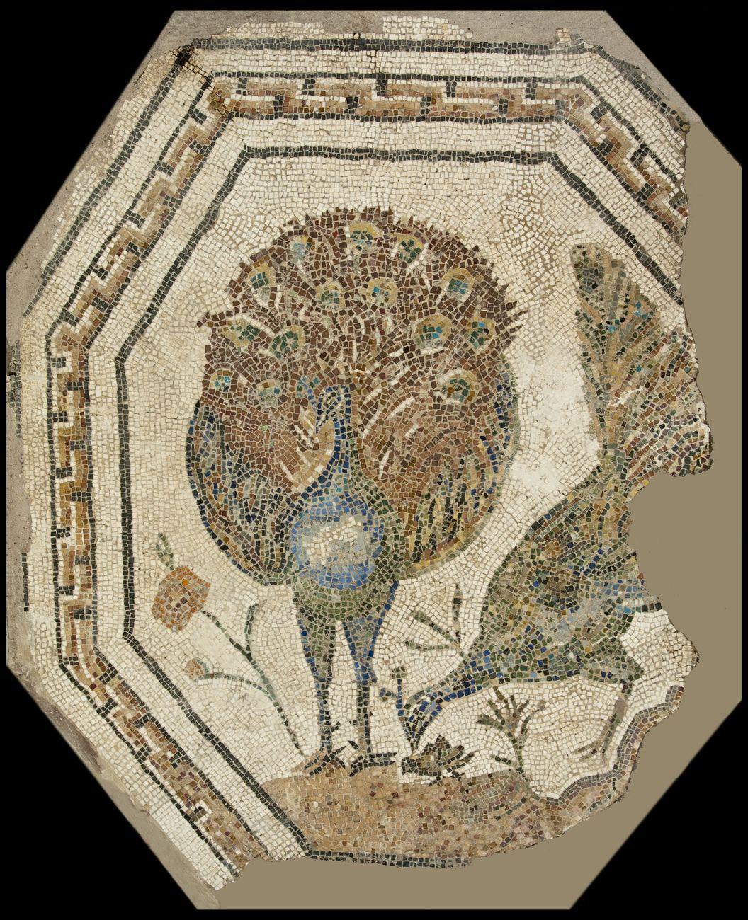 Musei Capitolini, Antiquarium, Mosaico policromo ottagonale con pavoni, II secolo d.C.