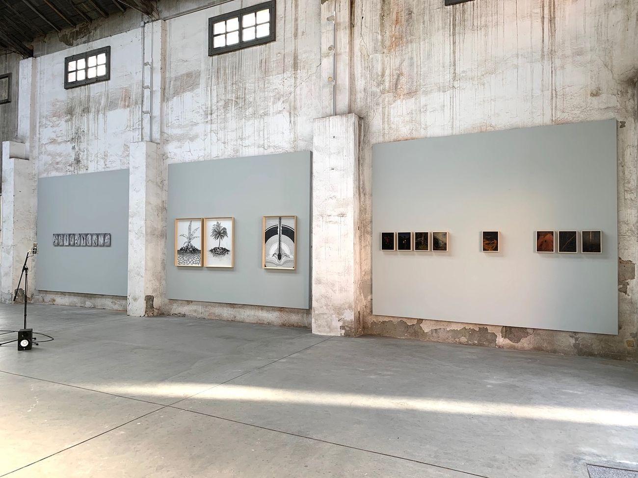 Natura risponde. Exhibition view at Spazio 21, Lodi 2021