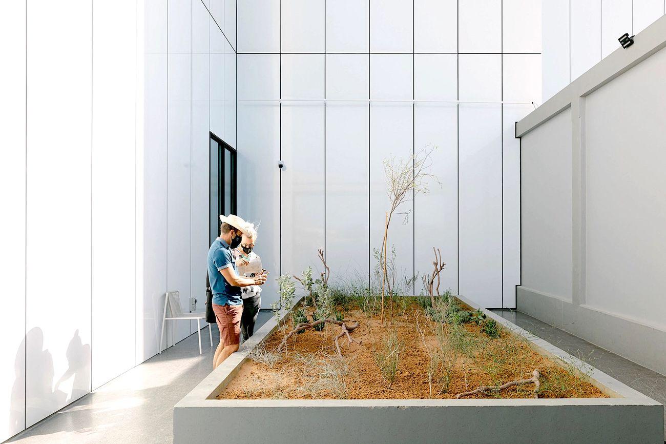 Desert is a Forest, Jameel Arts Center, Dubai