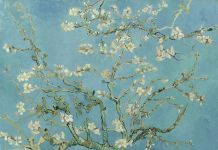 Vincent Van Gogh, Ramo di mandorlo in fiore, Google Art Project