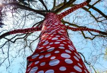 Yayoi Kusama, Ascension of Polka Dots on the Trees. Installation view at New York Botanical Garden, New York 2021. Photo Maurita Cardone