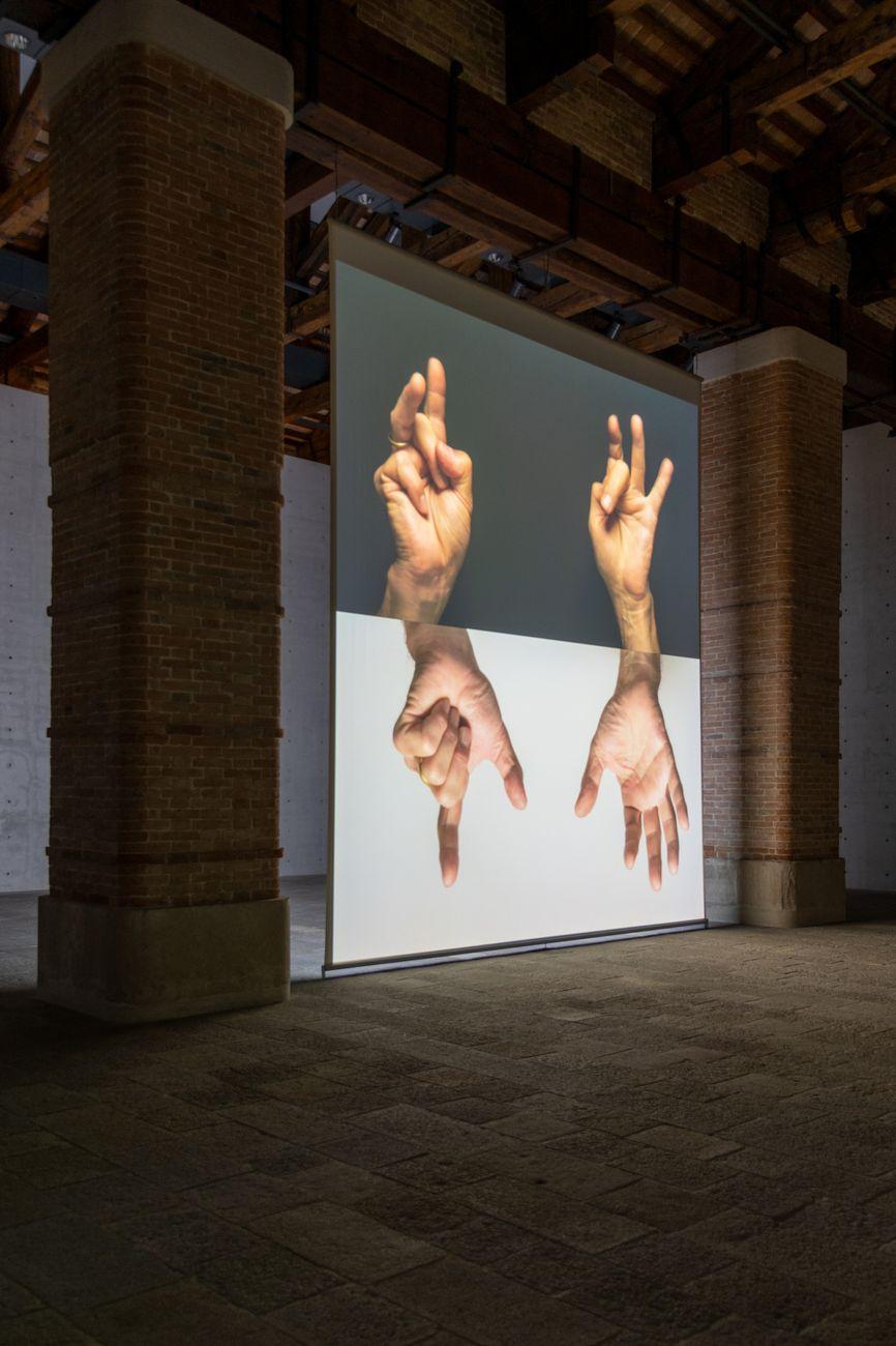 Bruce Nauman. Contrapposto Studies. Exhibition view at Punta della Dogana, Venezia 2021. Photo Irene Fanizza
