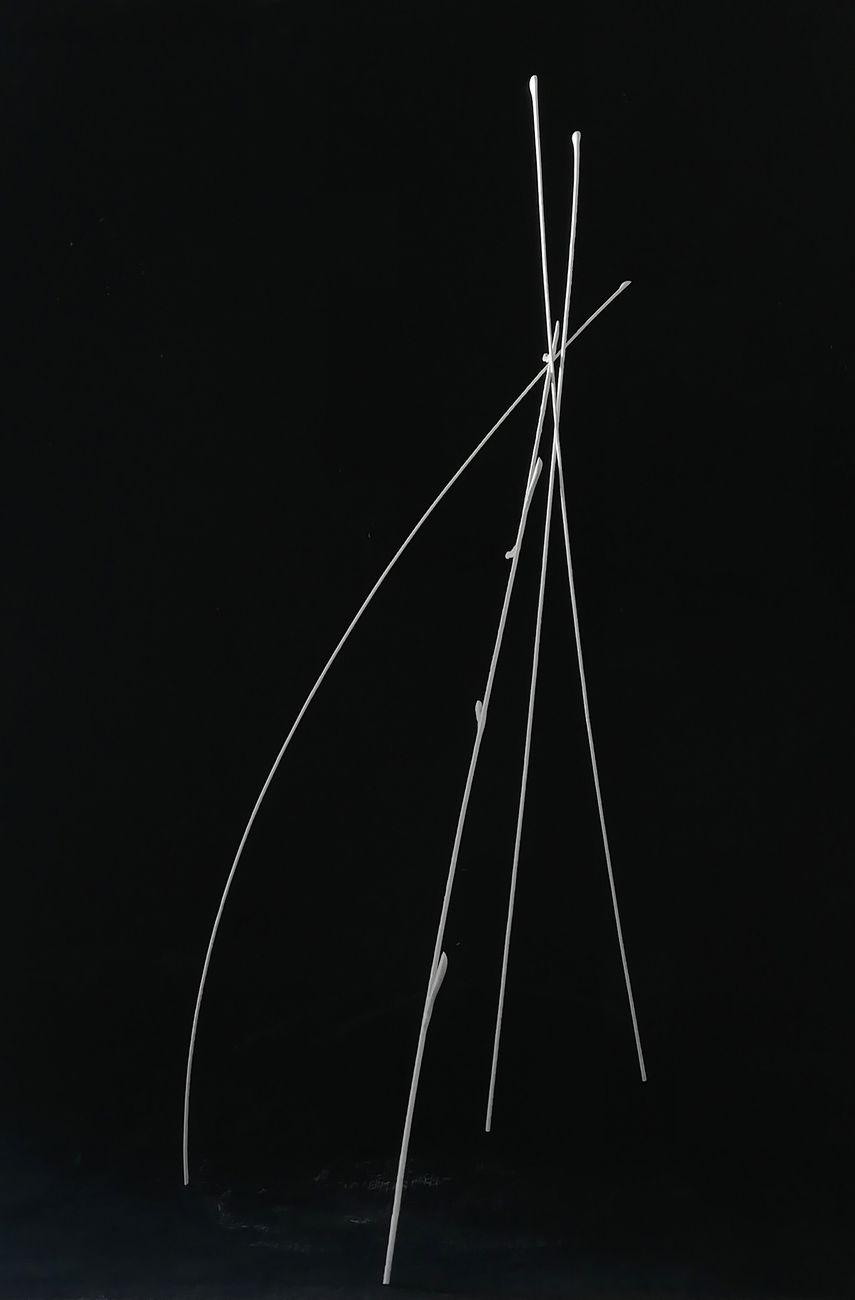 Marco Ulivieri, Senza titolo, 2020