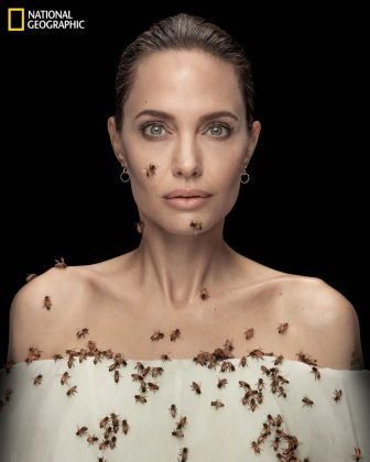 Angelina Jolie per il World Bee Day 2021 © Dan Winters National Geographic