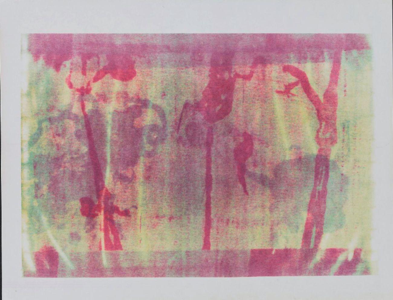 Esta Nesbitt, Studio sulla Xerografia , 1969