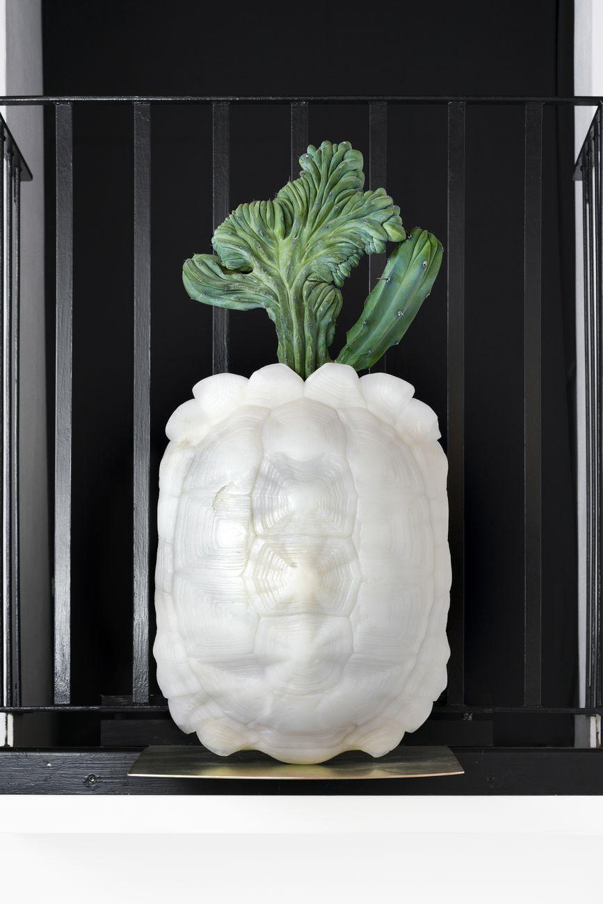Luca Petti, Albina Crestata, 2021, resina, myrtillocactus geometrizans forma crestata, lastra di ferro tropicalizzato. Photo t space studio