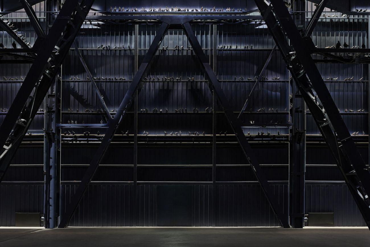 Maurizio Cattelan, Ghosts, 2021, piccioni in tassidermia. Installation view at Pirelli HangarBicocca, Milano 2021. Courtesy l'artista & Pirelli HangarBicocca, Milano. Photo Agostino Osio