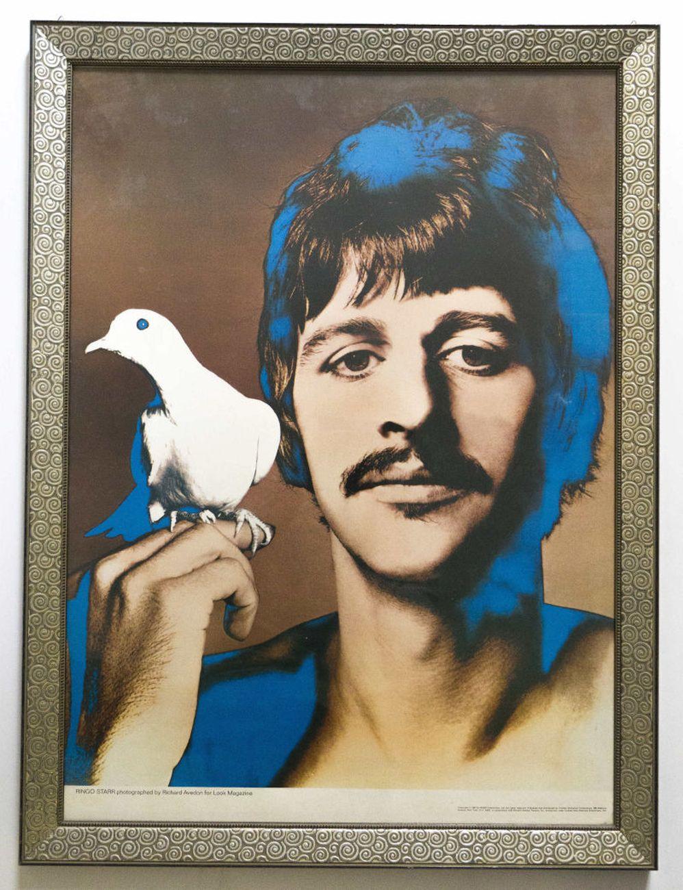Richard Avedon, [Ritratti psichedelici dei Beatles. Ringo Starr], 1967, serie di quattro poster. Milano, Collezione Italo Rota