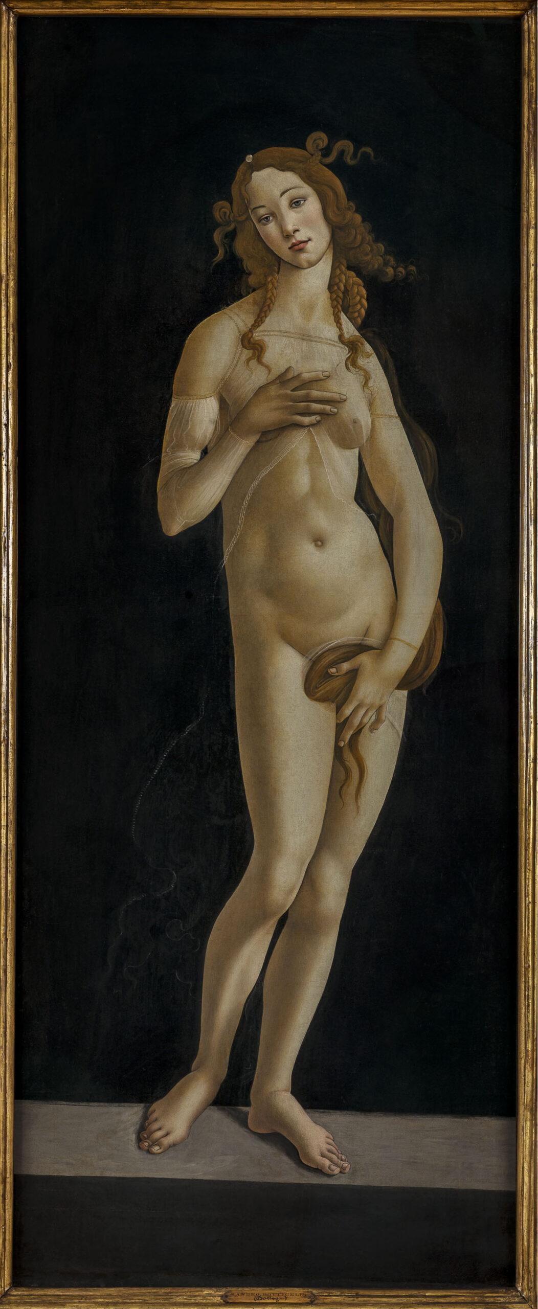 Sandro Botticelli, Venere, 1495-1497 c. © MiC - Musei Reali, Galleria Sabauda
