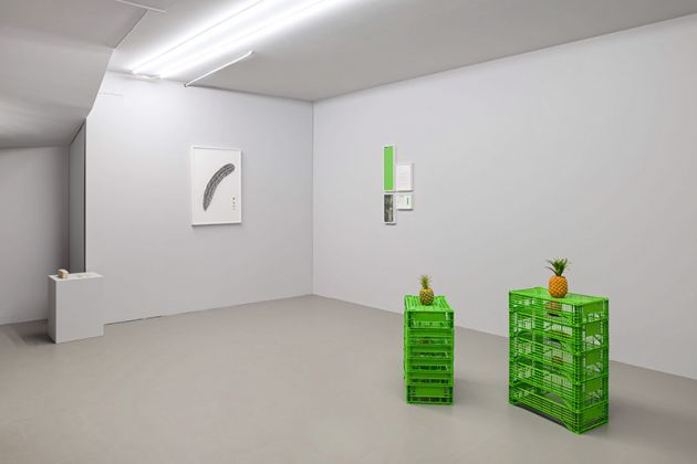 Fabien Marques, The Distinctions, installation views at SMDOT, Udine, 2019 2020