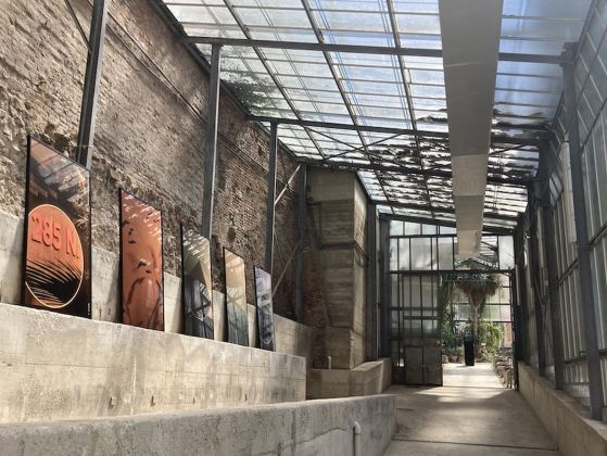 Colin Snapp. Western Monuments. Exhibition view at Orto Botanico, Siena 2021
