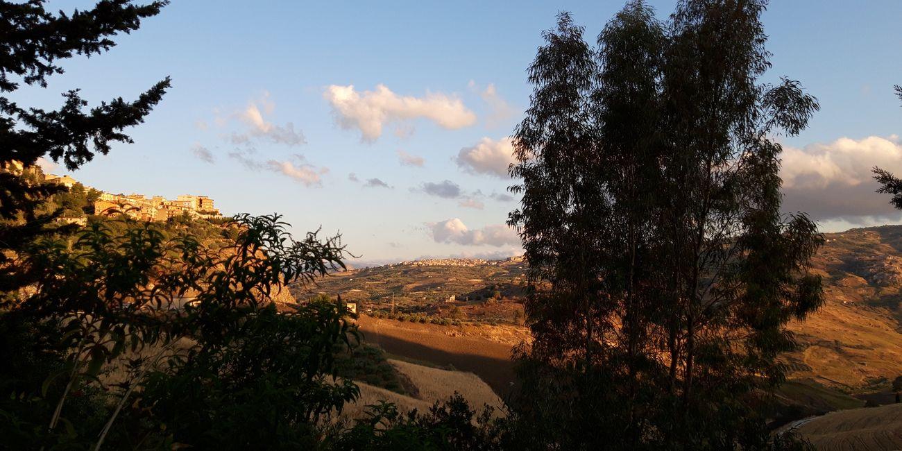 Farm Cultural Park