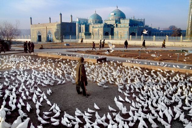 MAN STANDS IN THE MIDDLE OF A FLOCK OF DOVES AT THE HAZRAT ALI MOSQUE BY STEVE MCCURRY