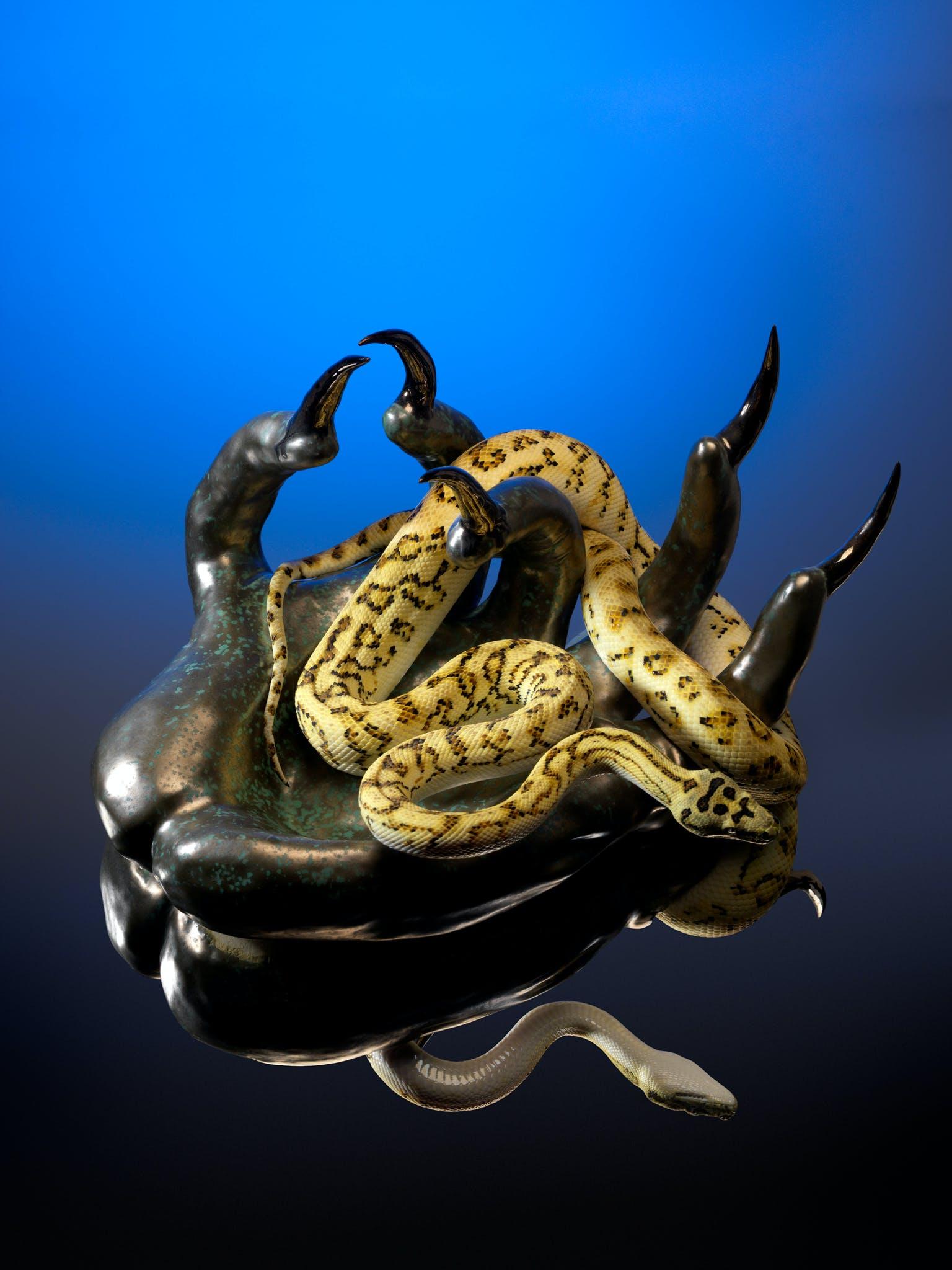 Naomi Gilon, Charmeuse de serpent, 2020, stampa su carta lucida, 120 x 84 cm